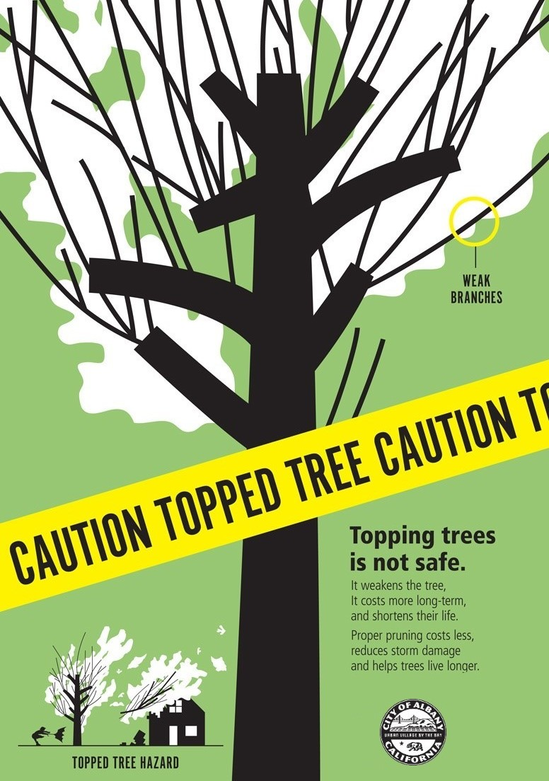 caution topped tree